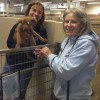 New initiatives turning rescues into cherished pets