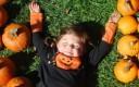Tylers-Pumpkin_Days-300x229.jpg