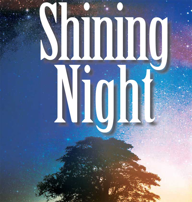 ShiningNight