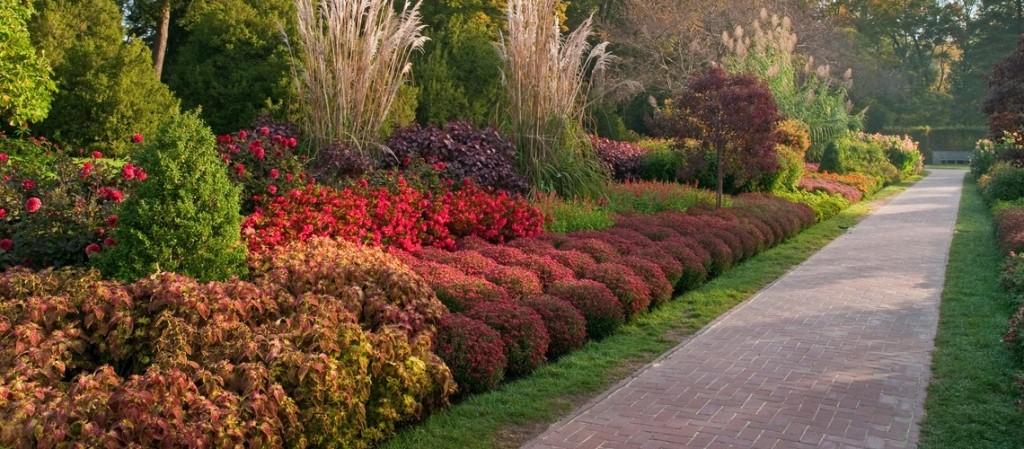 longwood autumn's colors