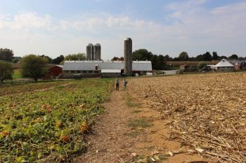 King's Pumpkin Farm of Parkesburg was one of two winners of agricultural awards from the Chester County Commissioners.